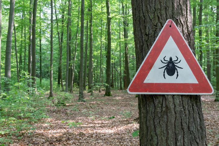 Warning Signs for Ticks